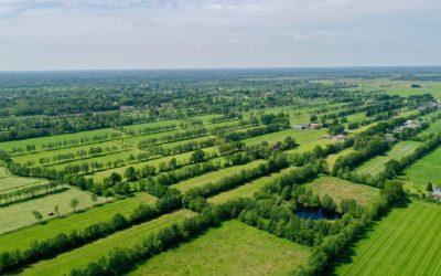 Herstel houtsingels Westerkwartier