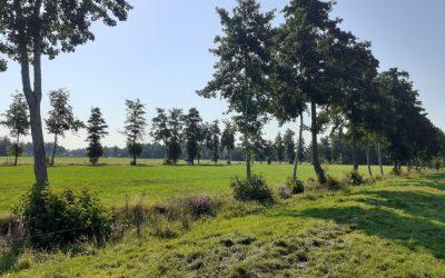 Excursies houtsingels in het Zuidelijk Westerkwartier