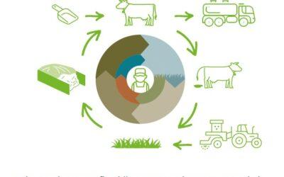 Onderzoek bedrijfssystemen zonder drijfmest bij twee boeren Collectief Groningen West